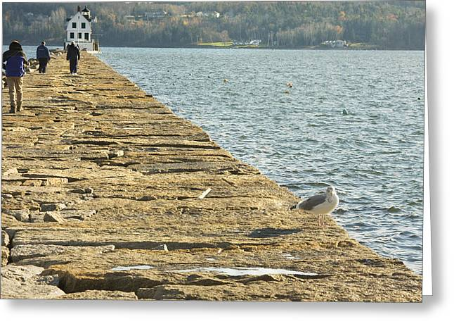 Maine Landscape Greeting Cards - Rockland Breakwater Lighthouse Coast of Maine Greeting Card by Keith Webber Jr