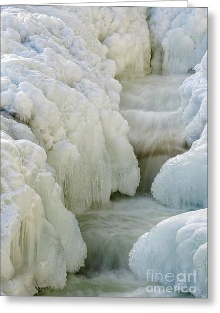 New England Snow Scene Greeting Cards - Rocky Gorge Scenic Area - White Mountains New Hampshire USA Greeting Card by Erin Paul Donovan