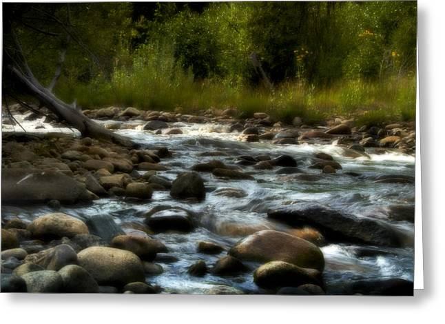 Stream Digital Art Greeting Cards - Rocky Mountain Stream Greeting Card by Ellen Heaverlo