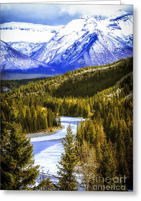 Winter Park Greeting Cards - Rocky Mountains landscape Greeting Card by Elena Elisseeva