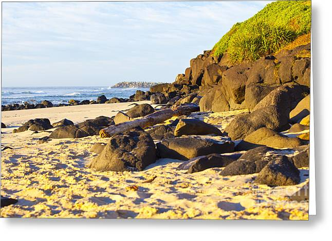 Shore Greeting Cards - Rocky Shores Greeting Card by Andrew Wood