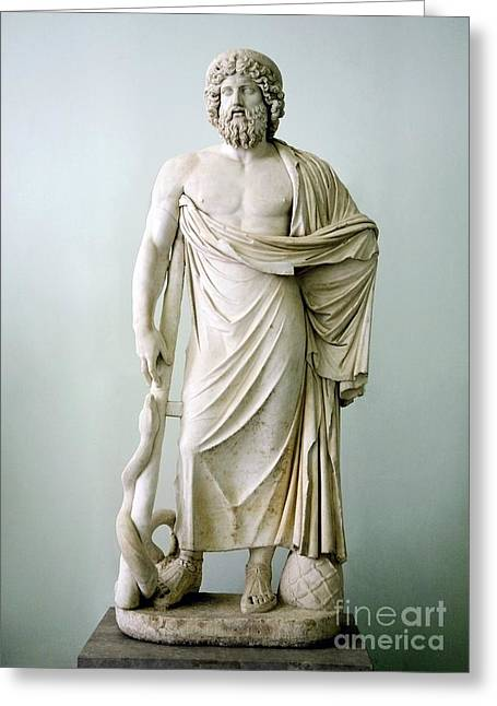 Greek Sculpture Greeting Cards - Roman Statue Of Asclepius Greeting Card by Sheila Terry