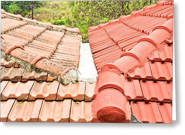 Tiling Greeting Cards - Roof tiles Greeting Card by Tom Gowanlock