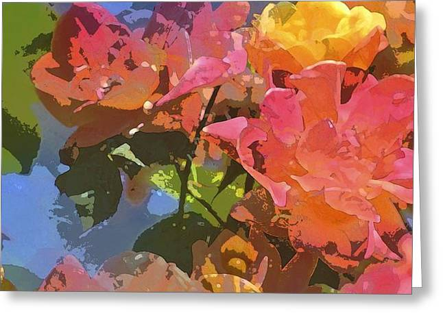 Rose 208 Greeting Card by Pamela Cooper
