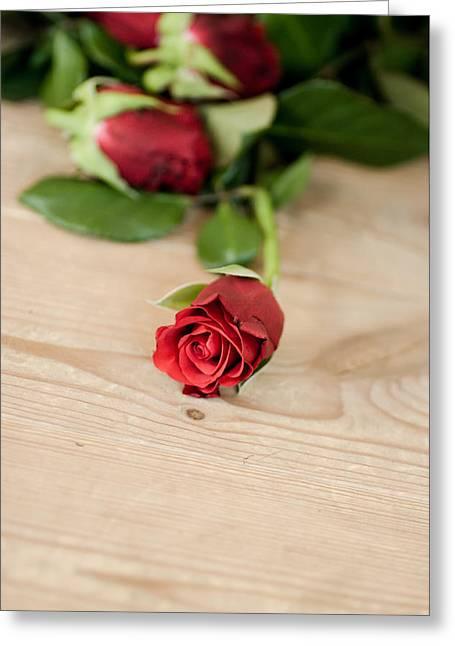 Kjg Greeting Cards - Rose Greeting Card by Mirra Photography