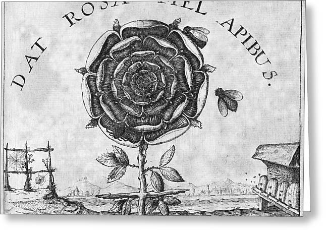 Symbology Greeting Cards - Rosicrucian Mystical Symbol Greeting Card by Middle Temple Library