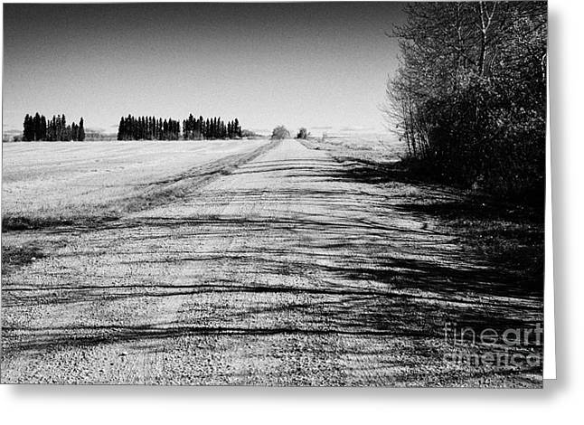 Gravel Road Greeting Cards - rough rural unpaved gravel road in remote Saskatchewan Canada Greeting Card by Joe Fox