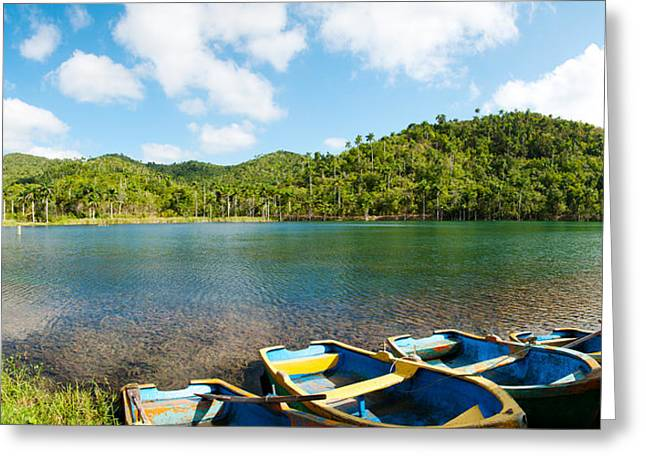 Del Rio Greeting Cards - Rowboats In A Pond, Las Terrazas, Pinar Greeting Card by Panoramic Images