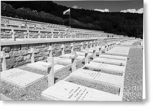 Headstones Greeting Cards - rows of graves at The Polish Cemetery at Monte cassino Greeting Card by Peter Noyce