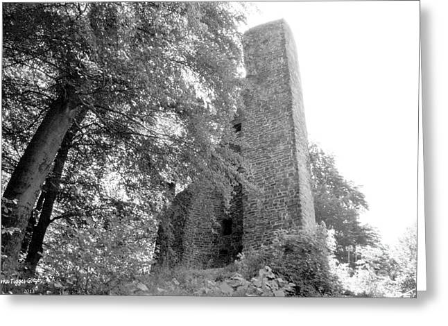 Shower Curtain Greeting Cards - Ruins of Waldenburg Castle Greeting Card by  ILONA ANITA TIGGES - GOETZE  ART and Photography