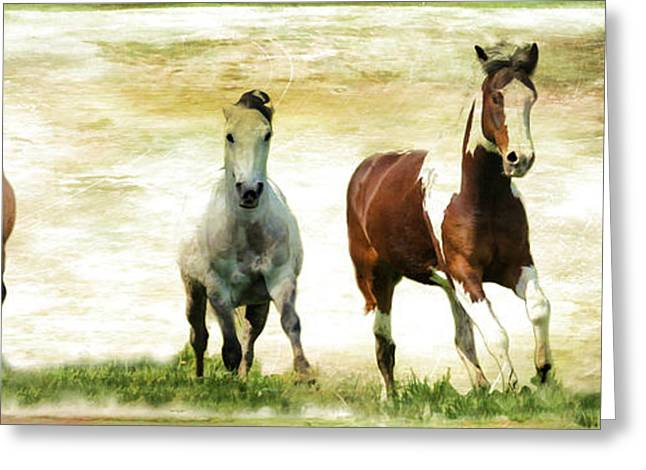 Vale Greeting Cards - Running Wild Greeting Card by Athena Mckinzie