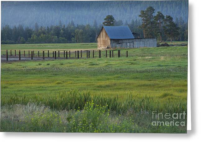 Outbuildings Greeting Cards - Rural Montana Greeting Card by Idaho Scenic Images Linda Lantzy
