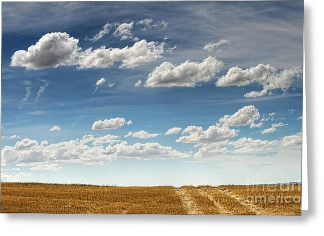 Roadway Greeting Cards - Rural road Greeting Card by Deyan Georgiev