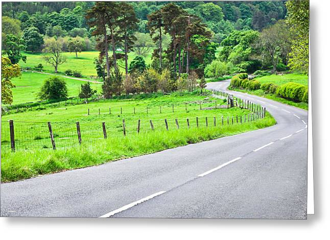 Nature Center Greeting Cards - Rural road Greeting Card by Tom Gowanlock