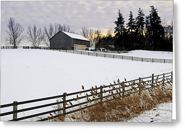 Snowy Field Greeting Cards - Rural winter landscape Greeting Card by Elena Elisseeva