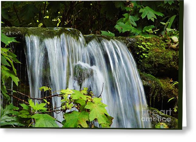 Best Seller Greeting Cards - Rushing Water Fall Greeting Card by D Hackett
