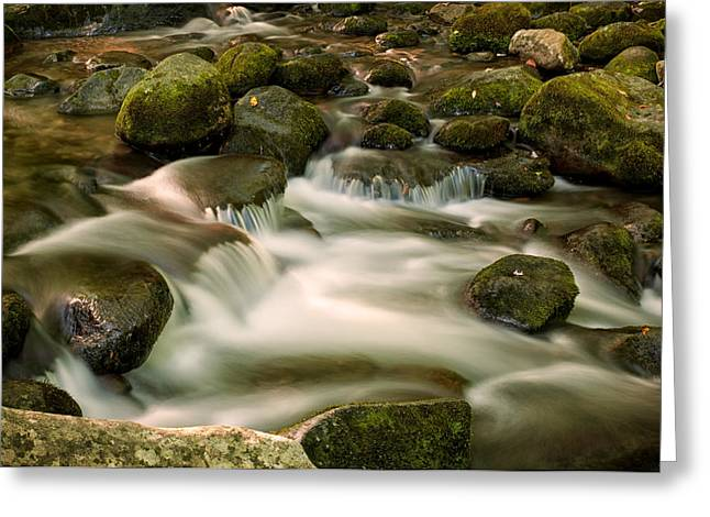 Gatlinburg Tennessee Greeting Cards - Rushing Waters Greeting Card by Alfred Gordon