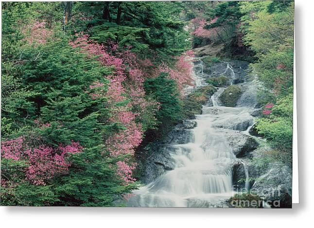 Water Over Rock Greeting Cards - Ryuzu-no-taki, Japan Greeting Card by Hiroshi Harada