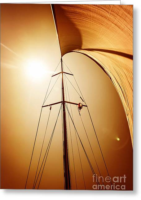 Sailing Ship Greeting Cards - Sail fluttering in the wind Greeting Card by Anna Omelchenko