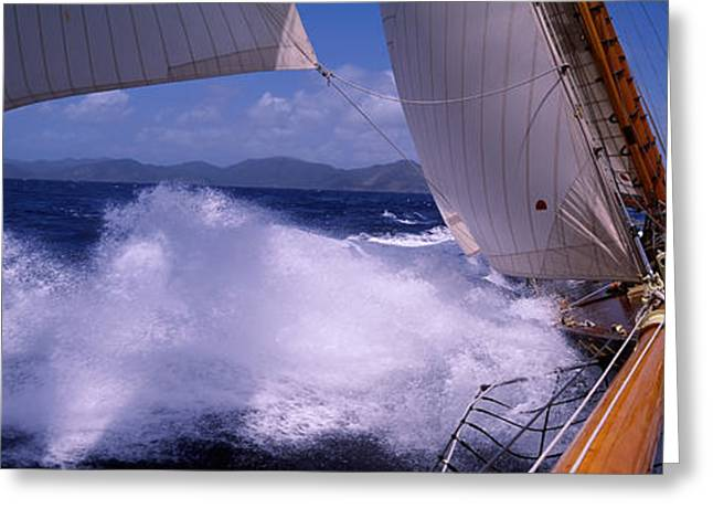Blue Sailboat Greeting Cards - Sailboat In The Sea, Antigua, Antigua Greeting Card by Panoramic Images