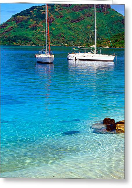 Blue Sailboat Greeting Cards - Sailboats In The Ocean, Tahiti, Society Greeting Card by Panoramic Images