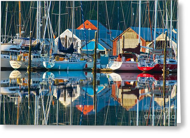 Docked Sailboat Greeting Cards - Sailboats Greeting Card by Richard and Ellen Thane