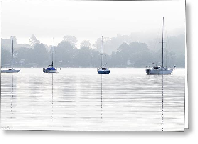 Concord Greeting Cards - Sailboats Greeting Card by Sharon Popek