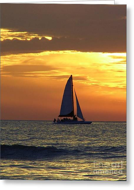 Reflection Of Sun In Clouds Greeting Cards - Sailing Into The Sunset Greeting Card by D Hackett