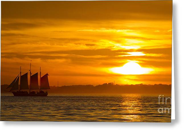 Tall Ships Greeting Cards - Sailing Yacht Schooner Pride Sunset Greeting Card by Dustin K Ryan
