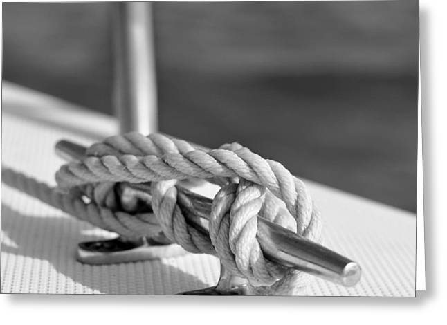 Sailboat Art Greeting Cards - Sailors Knot Square Greeting Card by Laura  Fasulo
