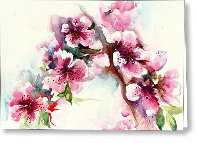 Mit Greeting Cards - Sakura - Cherry Tree Blossom Watercolor Greeting Card by Tiberiu Soos