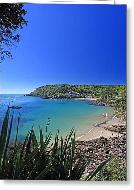 Blue Ria Greeting Cards - Salcombe Devon  Greeting Card by Ollie Taylor