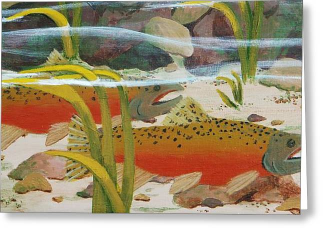 Chinook Paintings Greeting Cards - Salmon Greeting Card by Katherine Young-Beck