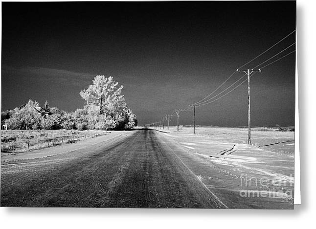 Harsh Conditions Greeting Cards - salt and grit covered rural small road in Forget Saskatchewan Canada Greeting Card by Joe Fox