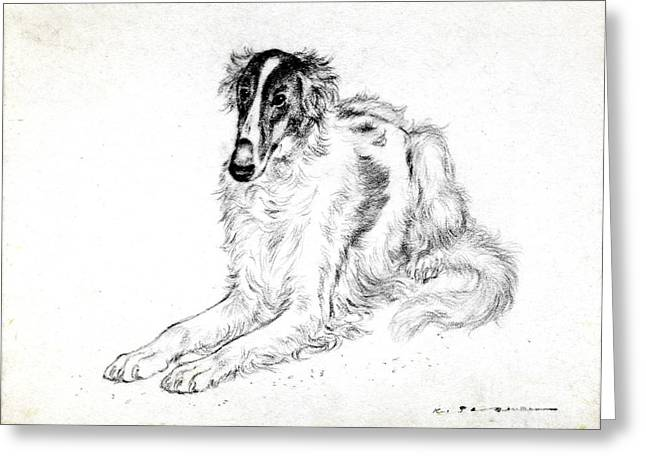 Greyhound Dog Pastels Greeting Cards - Saluki Greeting Card by Kurt Tessmann