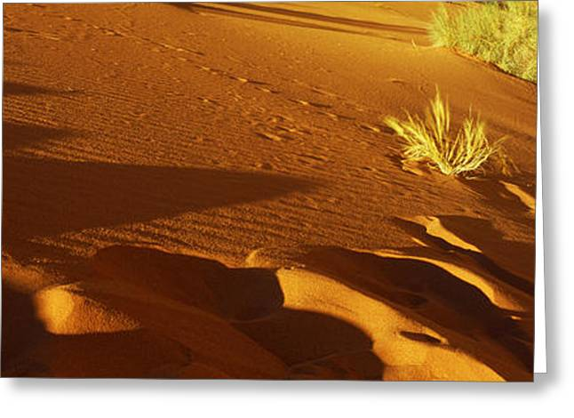 Jordan Photographs Greeting Cards - Sand Dunes In A Desert, Jordan Greeting Card by Panoramic Images