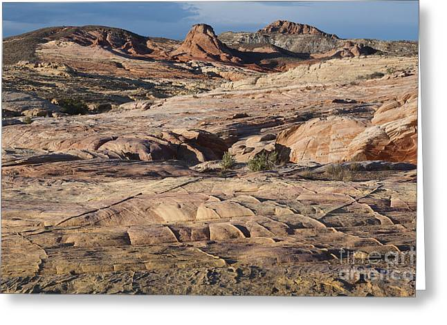 Geologic Formations Greeting Cards - Sandstone Formations Greeting Card by John Shaw
