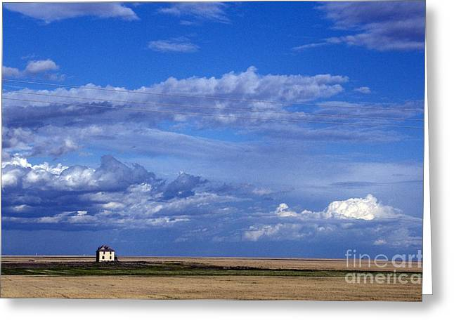 Saskatchewan Farmland Greeting Card by Mark Newman