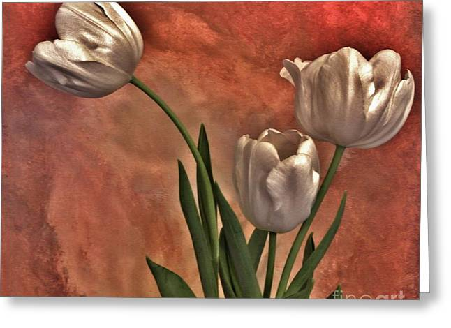 Light Taupe Greeting Cards - Satin Tulips Greeting Card by Marsha Heiken