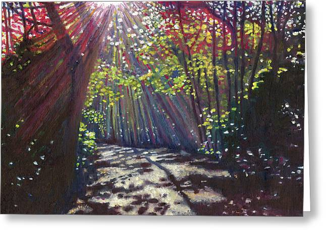 Shadow Art Greeting Cards - Scattered light Greeting Card by Helen White