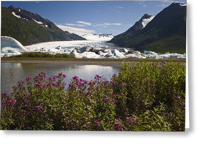 Scenic View Of Spencer Glacier In The Greeting Card by Jeff Schultz