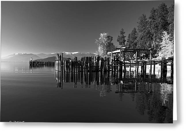 Schweitzer Greeting Cards - Schweitzer from Sunnyside and the Boatworks on Lake Pend Oreille Greeting Card by Bill Schaudt