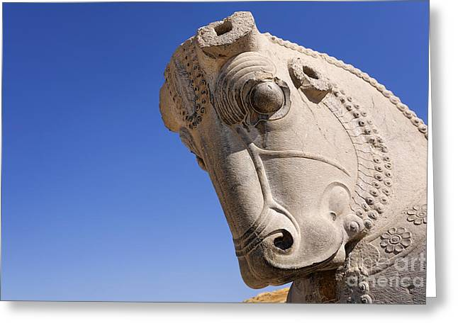 Ancient Persian Art Greeting Cards - Sculture of a horses head at Persepolis in Iran Greeting Card by Robert Preston