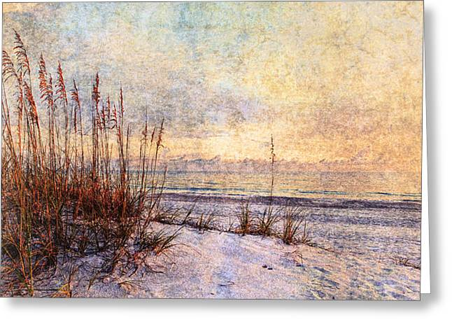 Reverence Greeting Cards - Sea Oats 5 Greeting Card by Skip Nall