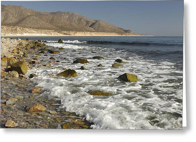 Ventana Greeting Cards - Sea of Cortez Greeting Card by Christian Heeb