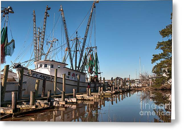 Shrimp Boat Captains Greeting Cards - Sea Treasure Greeting Card by Dale Powell