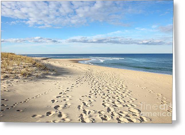 Cape Cod Tourism. Greeting Cards - Seashore Greeting Card by Denis Tangney Jr