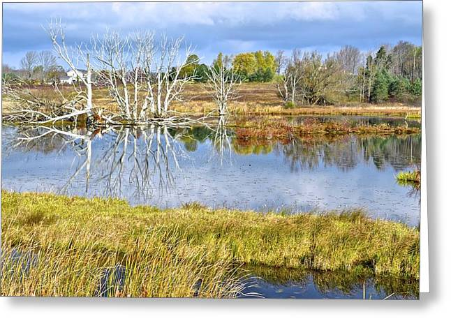 Seasons End Greeting Card by Frozen in Time Fine Art Photography