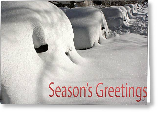 Snowmageddon Greeting Cards - Seasons Greetings Greeting Card by Stuart Litoff