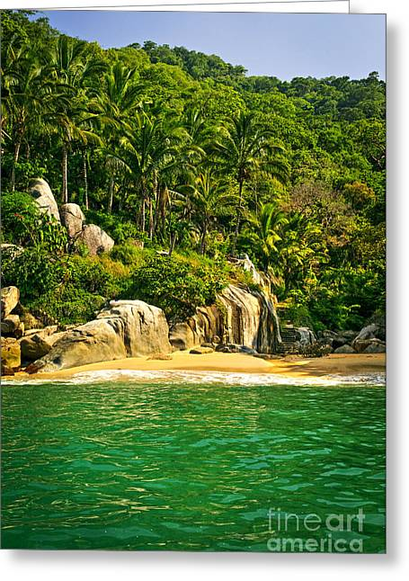 Puerto Vallarta Greeting Cards - Secluded Beach  Greeting Card by Elena Elisseeva